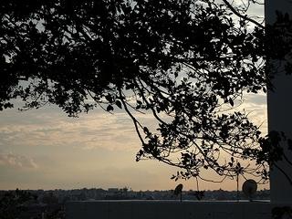 ヘアラウンジ スリービー(HAIR LOUNGE THREE BEE)付近の景色